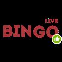 Bingo on money icon