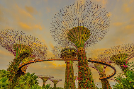 Gardens by the Bay evening view1