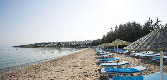 Altin Yunus Apart Beach Plus