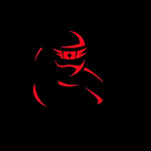 Ninja UnSeen for PC