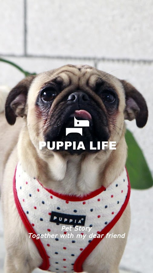 PUPPIA- screenshot