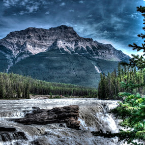 Mountain by Philip O'Brien - Landscapes Mountains & Hills ( mountain, tree, hdr, rockies, river )