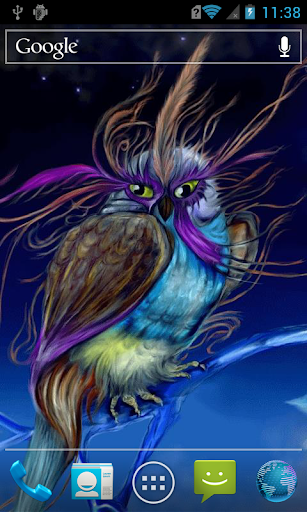 Multicoloured owl Live WP