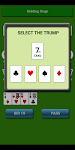 screenshot of Card Game 29