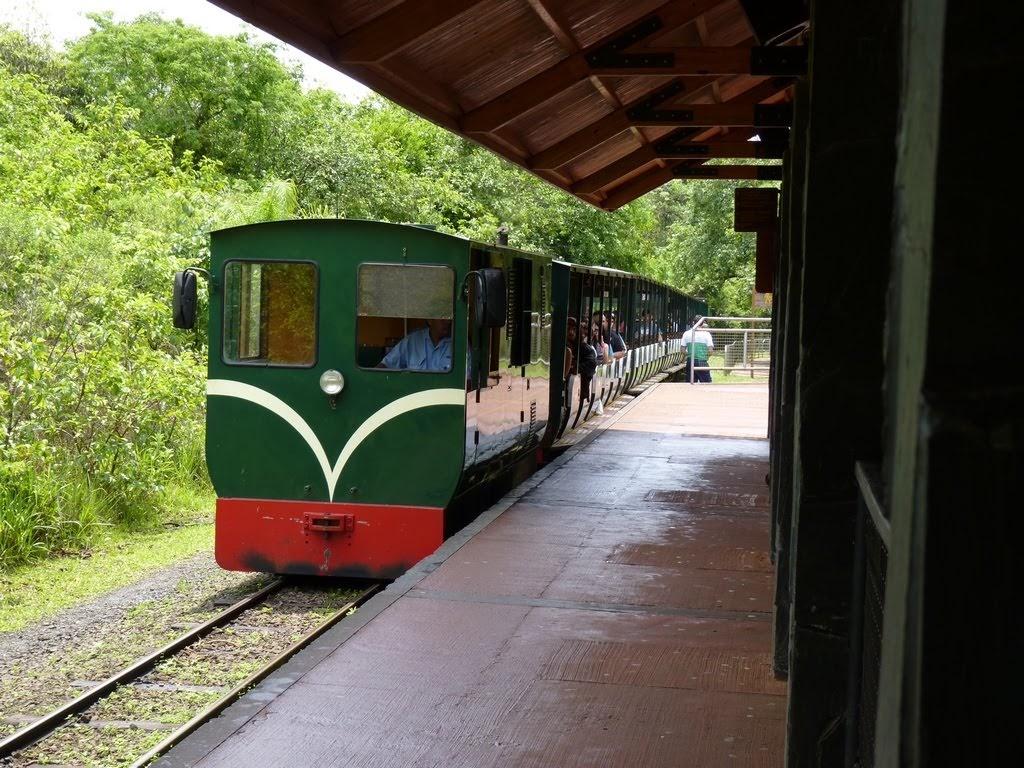 Tren Ecologico Cataratas del Iguazu