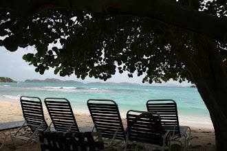 Photo: Our favorite beach location, under the Sea Grape tree, feet from the amazing 85 degree water