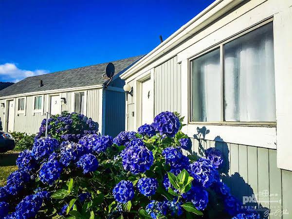 Beachcomber Cottages