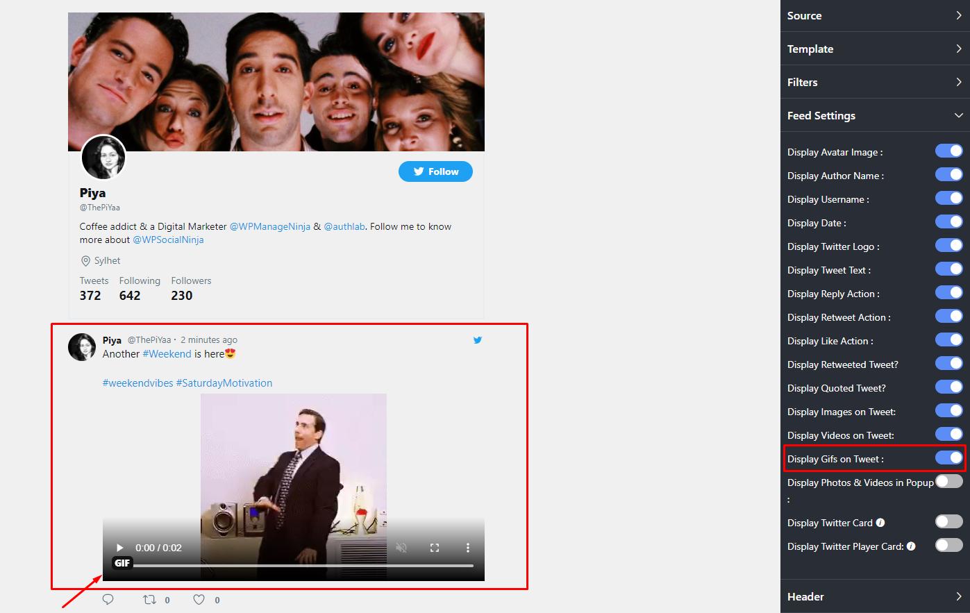 Display GIFs on Tweet