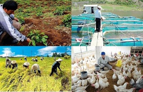 Thách thức của ngành nông nghiệp Việt Nam như thế nào?