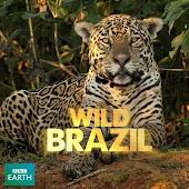 Brazil Gone Wild aka Wild Brazil