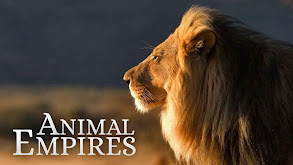 Animal Empires thumbnail