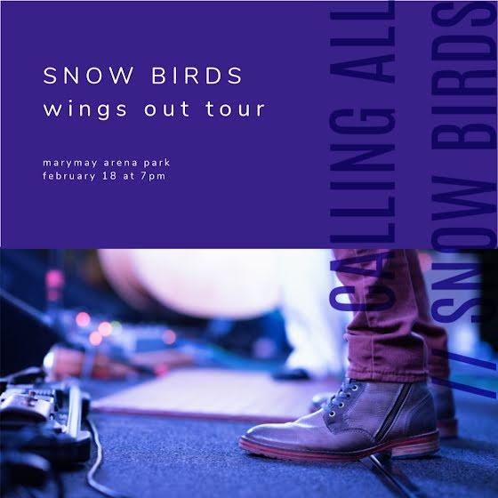 Snow Birds Tour - Instagram Post Template