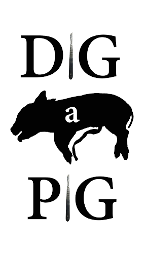 Dig a Pig for Android