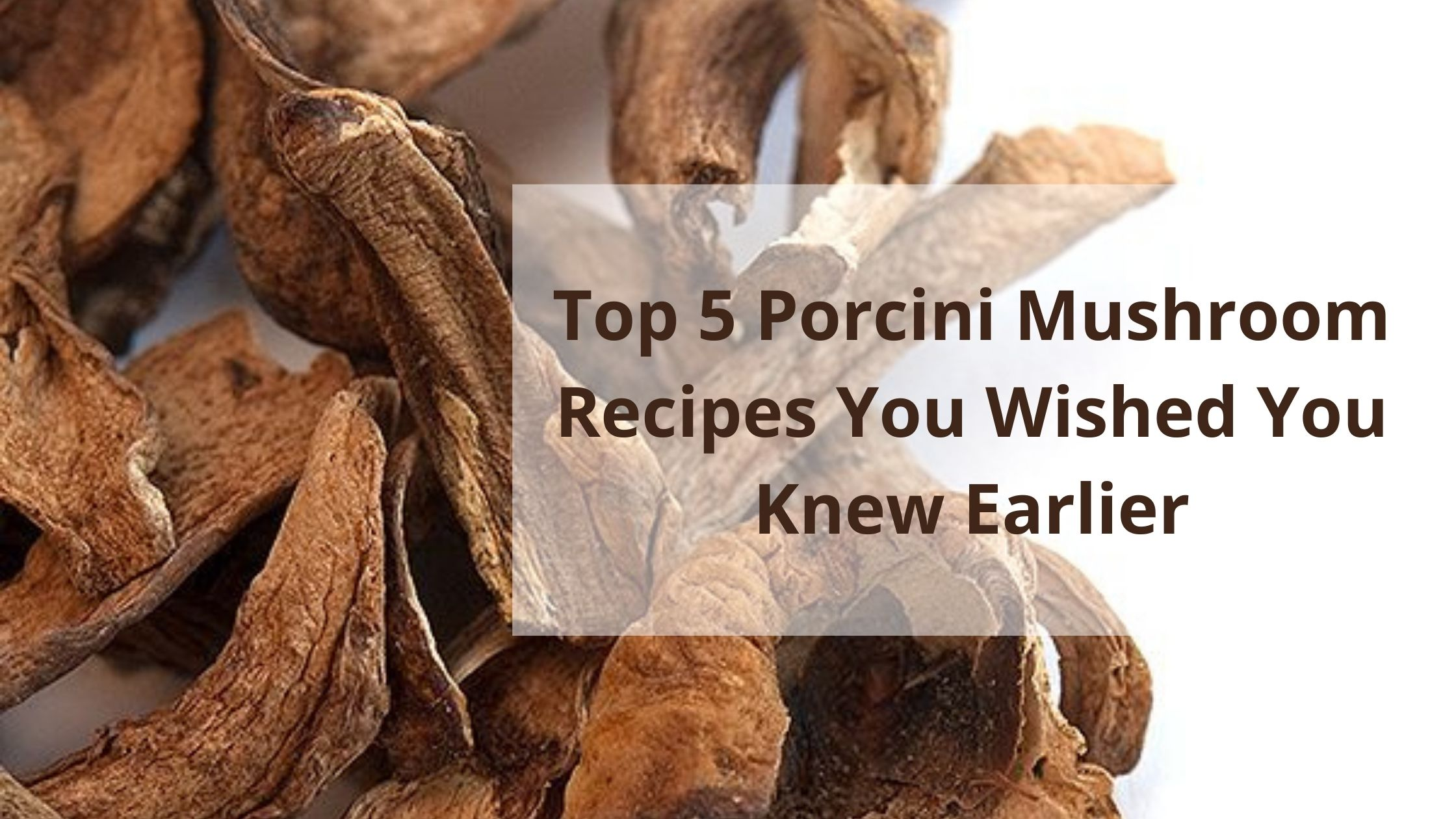 Top 5 Porcini Mushroom Recipes You Wished You Knew Earlier