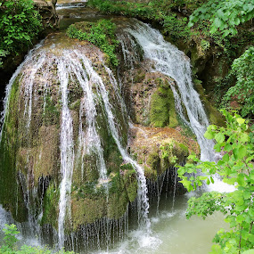 waterfall Bigar by Ionela Garovat - Nature Up Close Water ( water, tree, nature, waterfall bigar )