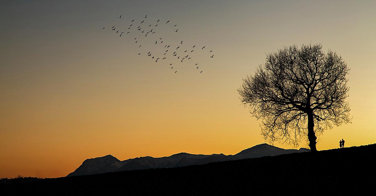 Spettacolo al tramonto di Franz78