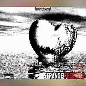 SauceYanda_Strange Feelings Upload Your Music Free