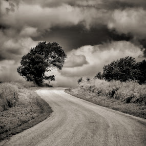 Back Roads by Val Ewing - Black & White Landscapes ( clouds, back roads, black and white, trees, roads )