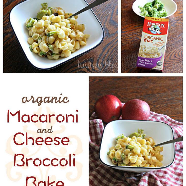 Organic Macaroni and Cheese Broccoli Bake Recipe