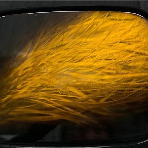 ヴェルファイア ANH20Wのカスタム事例画像 SHU・VELさんの2020年08月28日23:23の投稿