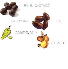Photo: Canción de los frutos del otoño