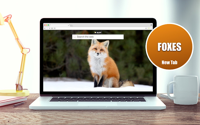 HD Foxes Wallpaper New Tabs Theme
