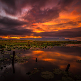 by Rechard Sniper - Landscapes Sunsets & Sunrises