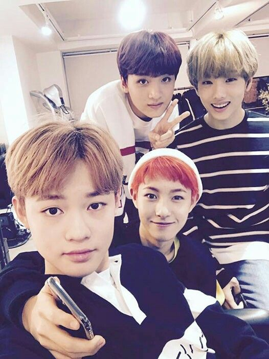 NCT Dream Chenle, Haechan, Renjun and Jisung