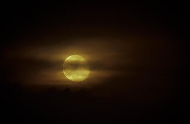 Darkness di Alessia