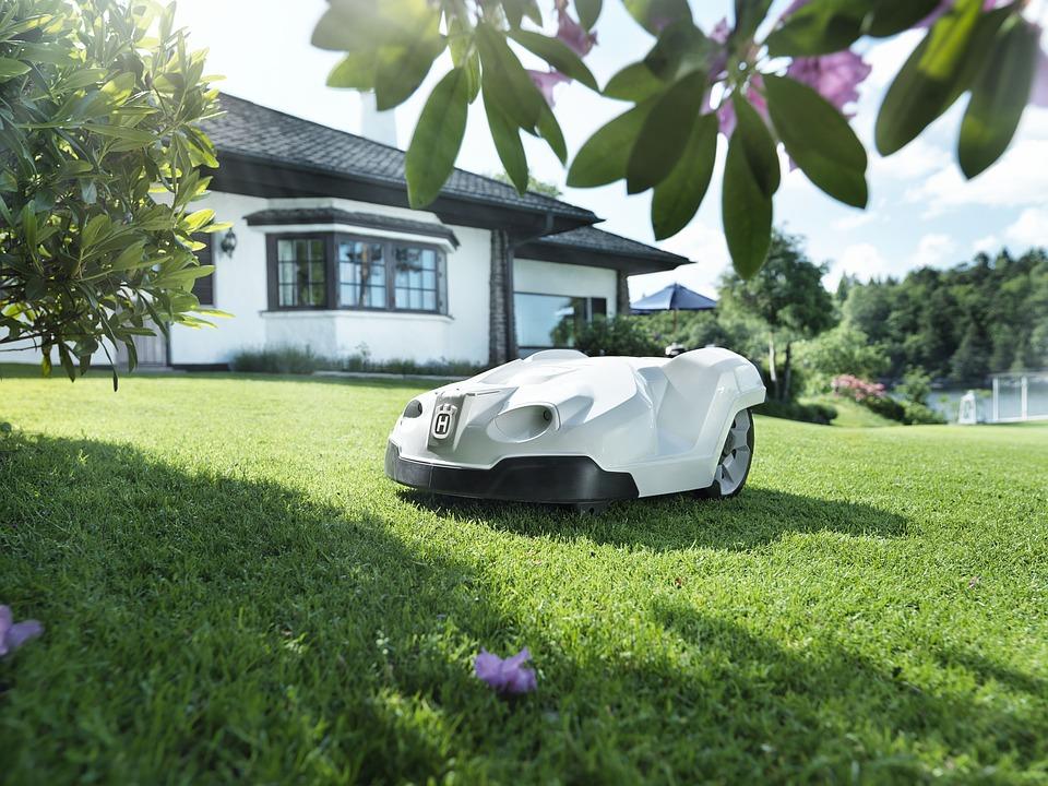 Garden, Garden Shop, Home Garden, Lawn, Lawn Mower