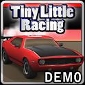 Tiny Little Racing Demo icon
