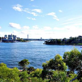【世界の絶景】オーストラリア・シドニーのオアシスのような公園「バランガルー・リザーブ(Barangaroo Reserve)」