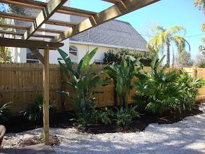 Photo: Tropical Plantings