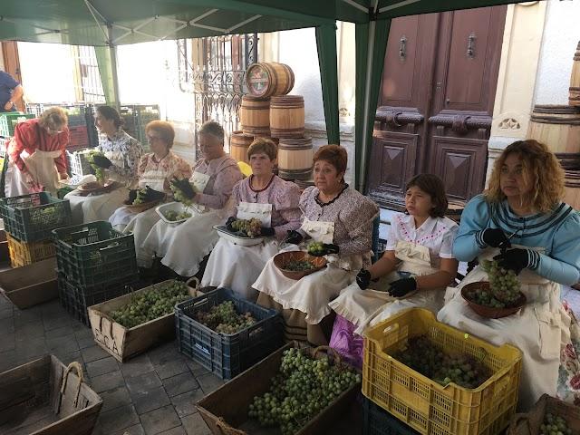 Una de las demostraciones está dedicada a la actividad de la uva.