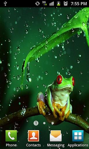 Rain Drops HD Live Wallpaper Screenshot 1