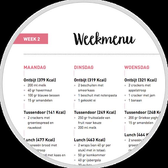 www project gezond nl recepten gratis weekmenu