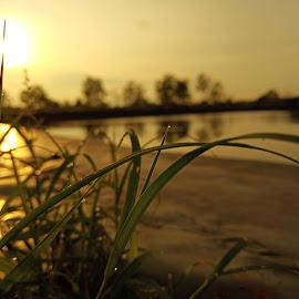 by Rangga Arfina - Nature Up Close Natural Waterdrops