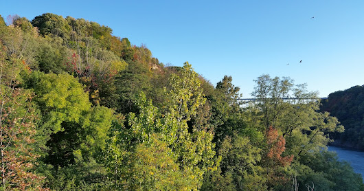 Hike along the Artpark Niagara Gorge Trail