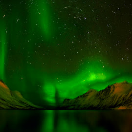 by Stanley P. - Landscapes Starscapes (  )