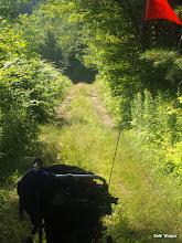 Photo: I finally make it to some grassy stage roads