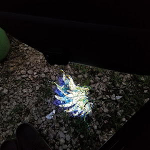 エブリイバン  16年式デラックス2のカスタム事例画像 たーかー[輪止めビビリーズ沖縄地区]さんの2019年06月26日22:29の投稿