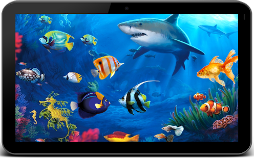 Fish live wallpaper 3d aquarium phone background for 3d fish live wallpaper