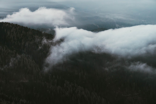Fly high di DanieleCettolin