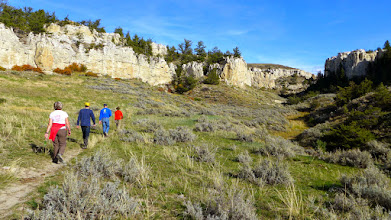 Photo: On the way to Neat Coulee - White Cliffs of the Missouri