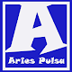 Aries Pulsa for PC-Windows 7,8,10 and Mac