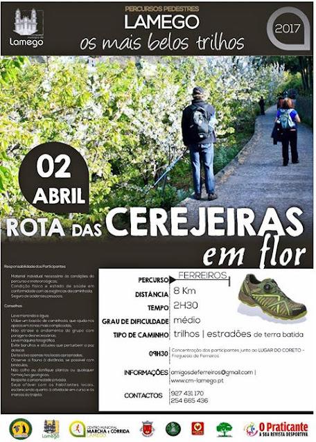 Caminhada em Ferreiros parte à descoberta das cerejeiras em flor