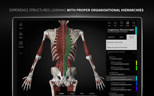 Anatomyka - Interactive 3D Human Anatomy 1.1.1 screenshots 19