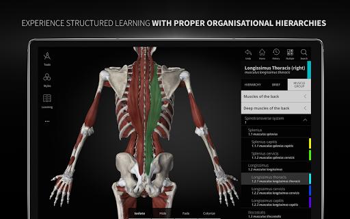 Anatomyka - 3D Human Anatomy Atlas 1.8.5 screenshots 22