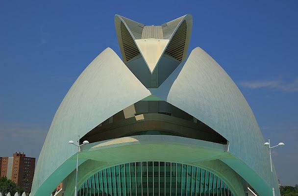 Calatrava di Tauri41