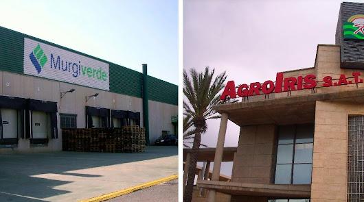 Ambas empresas tienen sede social en El Ejido.